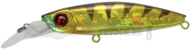 NO.307 Crash HG Gold Perch
