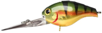aurora gold northern perch 7884