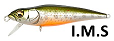 AL Brook Trout